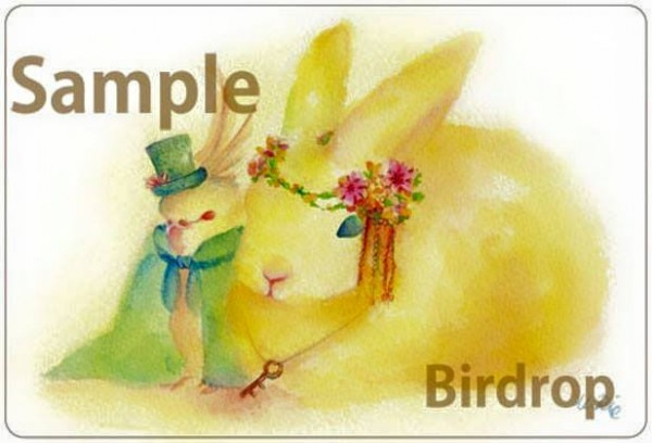 birdrop